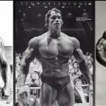 Somatotipos-musculares1-1024x464