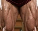 piernas-gigantes-272x125